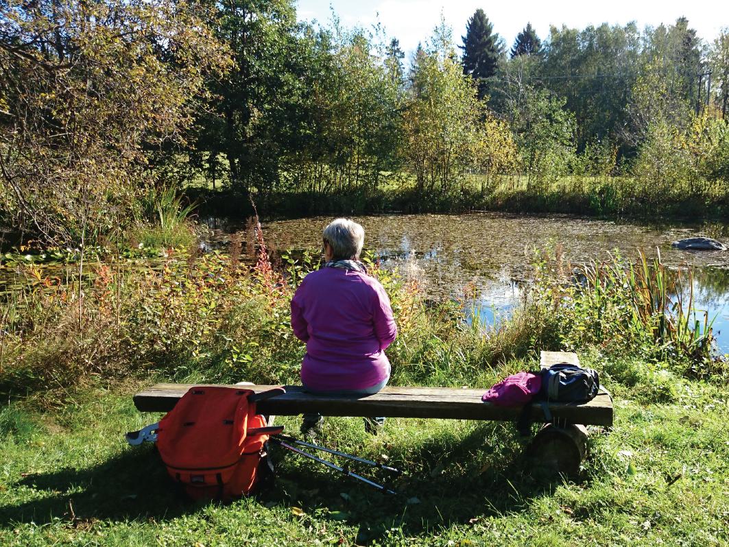 Dame sitter på en benk ved et lite vann i grønne omgivelser