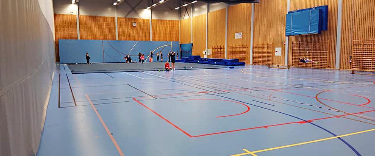 Idrettshall med turnaktivitet, vertikaldelt med skillevegg