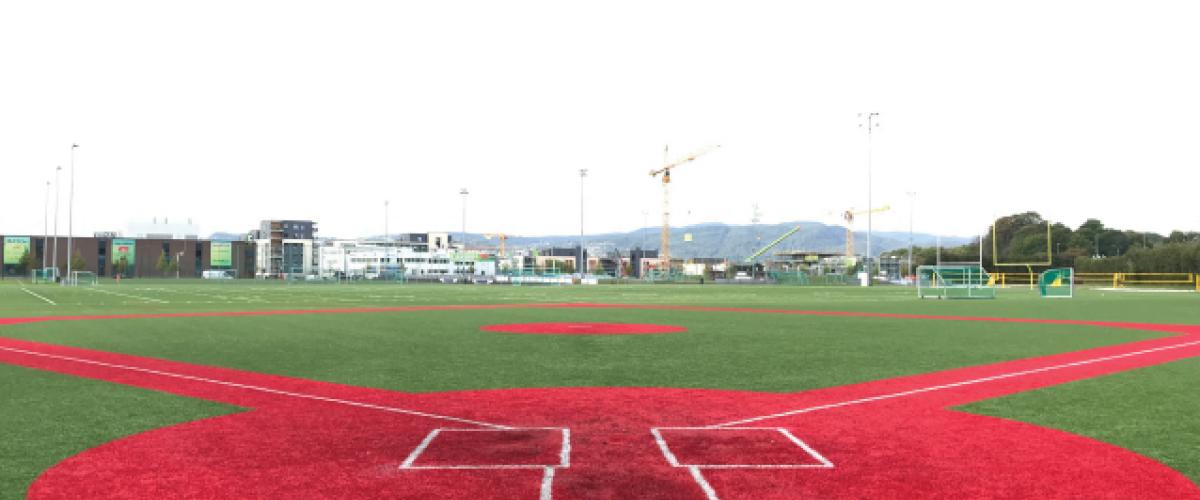 Innerbane for baseball