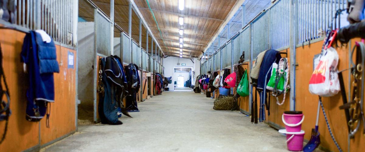 Flere hestebokser i en lang gang