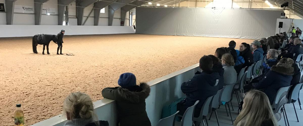 Haugaland Hestesport Arena publikum