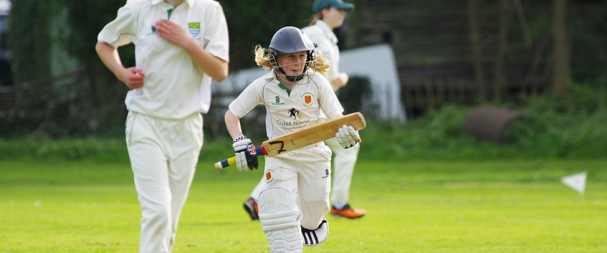 Illustrasjonsbilde cricket