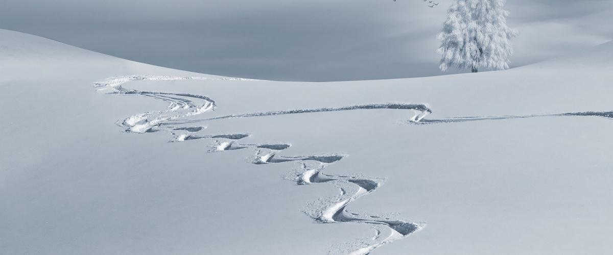 Snølandskap med spor
