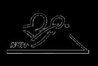Logo Norges Bordtennisforbund