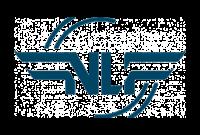 Logo Norges Luftsportforbund